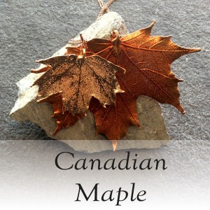 Canadian Maple
